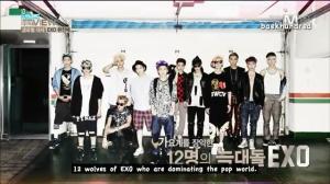 12 wolves EXO